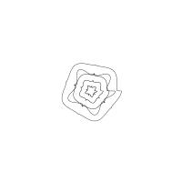 74_supershapelogo2a-00018-f8f446e94304483047c572bcbbee3be5