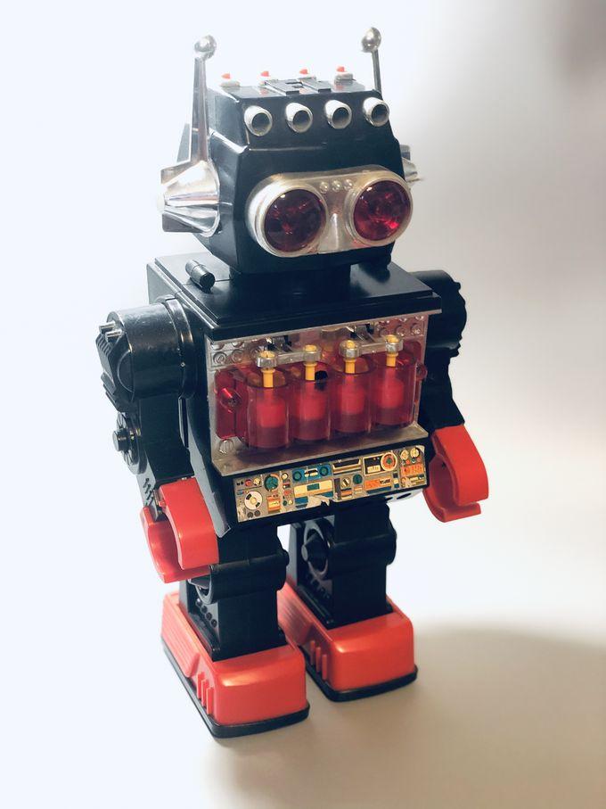 Sentinel Piston Robot